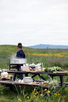 Summer picnic in Iceland | Cannelle et Vanille