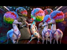 Madagascar 3 - Afro Circus Remix Great brain break or transition from stations - My kids AND Middle School) would LOVE this.and then their General Ed teachers would HATE me when I send them back to them ;-) Definitely gets stuck in your head! Broken Song, Broken Video, Brain Break Videos, Indoor Recess, Brain Gym, Movement Activities, School Videos, Film D'animation, Music And Movement