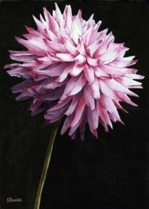 Powers Fine Art Studio | Original Watercolor Still-Life Artwork
