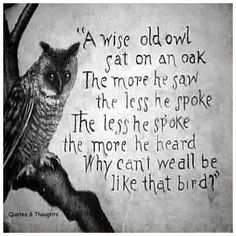 A wise old owl sat on an oak. The more he saw the less he spoke. The less he spoke the more he heard. Why can't we all be like that bird?