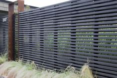 Cedar fence enclose the front yard for the dogs without closing off the world, but gives a sense of privacy.