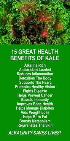 15 GREAT HEALTH BENEFITS OF KALE; the antioxidant loaded, alkaline rich, healing superfood. Learn about alkaline rich Kangen Water; the hydrogen rich, antioxidant loaded, ionized water that neutralizes free radicals that cause oxidative stress which can lead to a variety of health issues including disease such as cancer. It's also great to boost energy, stamina, build muscle, and burn fat. Change your water, change your life. #Kale #Health #Benefits