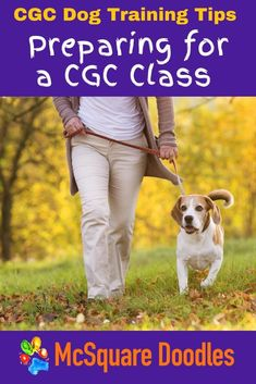 Passing the Canine Good Citizen Test is the AKC Gold Standard in good dog behavior. If you're interested in taking the CGC Test, signing up for a preparatory class is a great strategy, but if your dog doesn't know some basic obedience cues you may be setting you and your dog up for a frustrating experience. Read our blog post for some key questions you can ask yourself to evaluate if you and your dog are ready to take the next steps towards showing what a good boy or good girl you have. Therapy Dog Training, Dog Training Books, Leash Training, Therapy Dogs, Dog Training Tips, Dog Status, Dog Growling, Positive Dog Training, Good Citizen