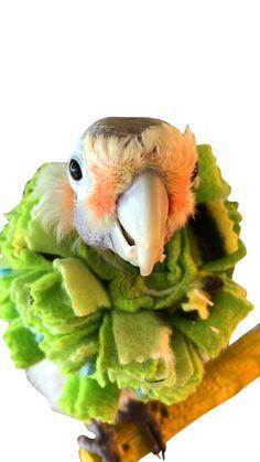 Home & Garden Gentle New Plush Parrot Bird Nest Warm Winter Hammock Pet Bird Hanging Bed Cage #325 Bird Cages & Nests