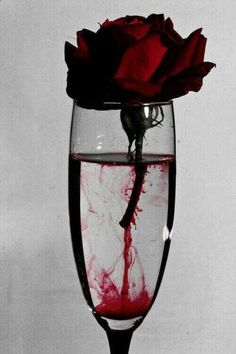 Ꮚelcome to ᙢy dark, elegant Ꮚorld of blood red and golden edits, roses, romance and the dark world of curiosities and Vampires. ~No Porn or gore~ Goth Dolly© Art Noir, Arte Obscura, Expensive Wine, Foto Art, Jolie Photo, Red Aesthetic, Aesthetic Roses, Makeup Aesthetic, Aesthetic Drawing