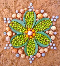 Many more wonders of Nature Mandalas on this website