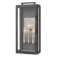 The collection conveys chic elements of early Americana styling. The candelabra lamping, clear glass and copper or antique nickel reflector infuse this sleek pocket lantern design constructed of solid aluminum with a perfect blend of old and new. Led Outdoor Wall Lights, Outdoor Barn Lighting, Outdoor Wall Lantern, Outdoor Wall Sconce, Outdoor Walls, Porch Lighting, Wall Lighting, Exterior Lighting, Lighting Design