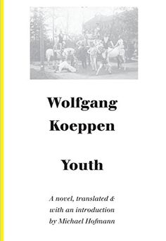Youth: Autobiographical Writings (German Literature Series) by Wolfgang Koeppen http://www.amazon.com/dp/1628970502/ref=cm_sw_r_pi_dp_hr4Uvb1PVGVW8
