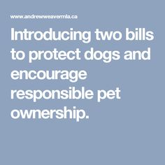 Introducing two bills to protect dogs and encourage responsible pet ownership.