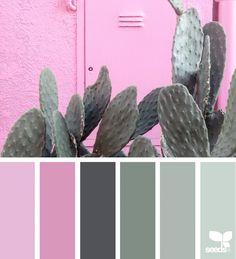 Likes, 15 Comments - Design Seeds® Colour Pallette, Colour Schemes, Color Combos, Color Palette Challenge, Design Seeds, World Of Color, Pantone Color, Colour Images, Simple Colors