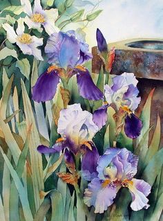 Irises and clematis garden watercolor art, painting 및 waterc Iris Painting, Silk Painting, Watercolour Painting, Watercolor Flowers, Painting & Drawing, Watercolours, Arte Floral, Iris Art, Iris Flowers
