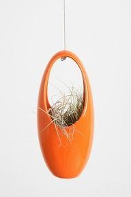 Hanging Egg Planter #urbanoutfitters