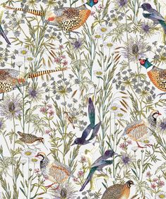bird wallpaper Woodland Birds Wallpaper from the Wallpaper Republic Collection by Mil BURKE DECOR William Morris, E90 335i, Boutique Wallpaper, Botanical Wallpaper, Vintage Bird Wallpaper, Young Animal, Wallpaper Roll, Animals, Artists
