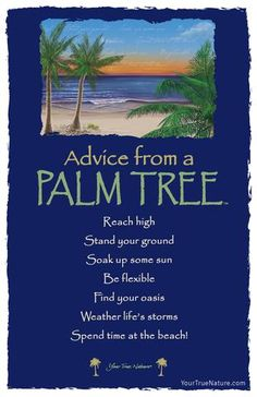 Bring nature into your classroom with this beautifully designed Advice from a Tree bookmark. A Your True Nature best-seller. Advice Quotes, Life Advice, Sign Quotes, Good Advice, Me Quotes, Funny Quotes, Advice Cards, Palm Tree Quotes, Hawaiian Quotes