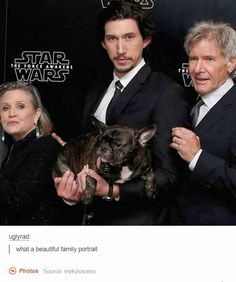 Carrie Fisher, Adam Driver and Harrison Ford with the real star of the Star Wars: The Force Awakens promotional trailer: Gary the dog. Star Wars Film, Star Wars Rebels, Star Wars Cast, Star Trek, Reylo, Carrie Fisher, Gary Fisher, Starwars, Cinema