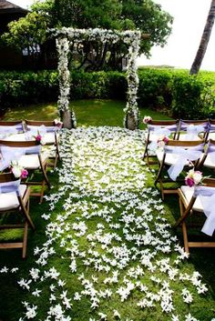 ideas for flowers strewn as carpet