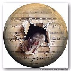 Круглое и овальное – 168 фотографий | ВКонтакте Maus Illustration, Illustrations, Mini Paintings, Paintings I Love, Pet Mice, Hamster, Music Images, Disney Tattoos, Bottle Crafts