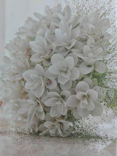 65 Ideas For Bridal Flowers Bouquet Tropical Wedding Bouquets, Wedding Dresses, White Flowers, Tropical Flowers, Bridal Flowers, Wedding Supplies, Hair Designs, Wedding Decorations, Groom