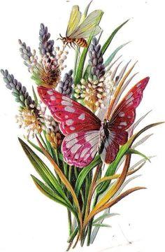 Oblaten Glanzbild scrap die cut chromo Schmetterling butterfly papillon gras bee