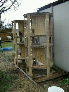 Upcycled Cable Reel for Chickens