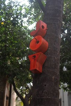 letter bird houses, I think it would be great to have a large tree with the words like the name of the kinds of birds that will house there