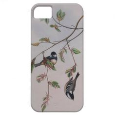 iPhone 5 Case - Vintage Illustration  Adorable iPhone 5 case showing two gorgeous blue, black and white wrens in a tree with little...