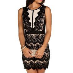 e9d5721137deb BNWT Beautiful Black & Nude Lace Midi Dress is Brand New W/ Tags.