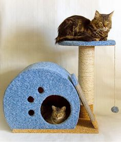 Detailed tutorial, how to make cat's house, cave, tree.