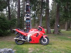 Dream Your Ride : Are Motorcycles Everywhere? Motorcycles, Adventure, Vehicles, Cars, Adventure Game, Adventure Books, Motorbikes, Vehicle, Crotch Rockets