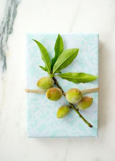 Gift Wrapping Inspiration: Fresh From The Garden — Wrappily | Eco-friendly Gift Wrap