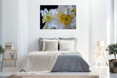Just the think for you home or office.  These beautiful daffodils look amazing as a large image which becomes a converstation piece in your home or office. Beautiful Images, Beautiful Flowers, Landscaping Images, Daffodils, Spring Flowers, Framed Prints, Fine Art, Bed, Furniture