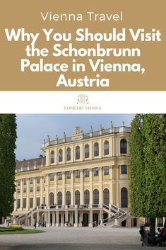Planning to travel to Vienna, Austria? The Schonbrunn Palace should be on your must-visit list! Tap this pin to discover why it's one of the best things to do in Vienna Cool Places To Visit, Places To Travel, Travel Destinations, Tour Tickets, Travel Around Europe, Austria Travel, Backpacking Europe, Grand Tour, Plan Your Trip