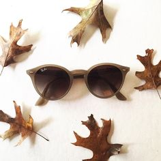 Snag this deal from Frames Direct! Get an extra 10% off Sunglasses.       http://qoo.ly/bvd8t