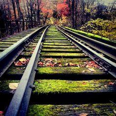 Abandoned Railway Bridge, Connecticut