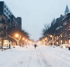 Newbury St-Boston, MA Winter 2015