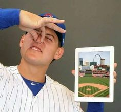 Thank you Anthony for stating the clearly obvious. Cubs World Series, Go Cubs Go, Chicago Cubs Baseball, Fun Group, Cubs Fan, Bear Cubs, Cubbies, Baseball Cards, Humor