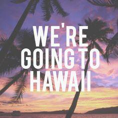 #zimmermanngoesto #hawaii #wherearewegoing #zimmermann