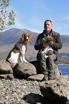 Kerry, Max and Paddy by Derwent Water, Lingholm Estate Springer Dog, English Springer Spaniel, I Love Dogs, Cute Dogs, Spaniel Breeds, Me And My Dog, Cult Following, Spaniels, Lake District