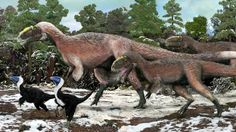 Yutyrannus lived long before T. rex, in the early Cretaceous Period.  A newly described relative of Tyrannosaurus rex is the largest known feathered animal - living or extinct.