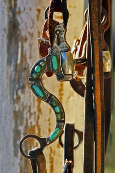 Bit and headstall