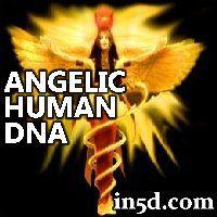 This article will help you understand the difference between the DNA template and the two strand chemical DNA and how DNA activation is the process of spiritual evolution. Human Dna, I Believe In Angels, Indigo Children, Spiritual Wellness, New Earth, Words Quotes, Sayings, Mind Body Soul, Spiritual Awakening