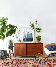 Decoracion con plantas. Foto google