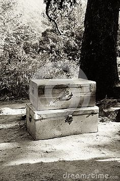 A black and white image of two tin trunks stacked on top of each other next to a tree on the ground.