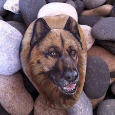 Wow! 3D realism in a rock painting.
