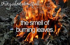 Things I love about fall...still remember how good they smelled...