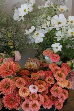 The 400 Square Foot Cutting Garden: The Flowers — the kokoro.-The 400 Square Foot Cutting Garden: The Flowers — the kokoro garden The 400 Square Foot Cutting Garden: The Flowers — the kokoro garden - Zinnia Garden, Cut Flower Garden, Flower Garden Design, Garden Plants, Cut Garden, Beautiful Flowers Garden, Flower Gardening, Flowers For Cutting Garden, Small Flower Gardens