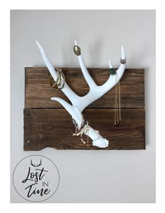 Excited to share the latest addition to my #etsy shop: Whitetail Antler Shed- Jewelry Holder or Wall Decor - Free Shipping in Canada https://etsy.me/2Gzrg5Q #housewares #homedecor #white #birthday #mothersday #brown #bedroom #whitetailantler #whitetailshed
