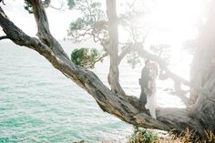 Bohemian-Inspired New Zealand Elopement: Carmen + Ingo (GWS)