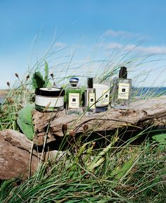 Escape the everyday along the windswept shore of the English Coast. Discover Jo Malone London Wood Sage & Sea Salt.