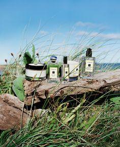 Jo Malone London | Wood Sage & Sea Salt  #EnglishCoast #Driftwood #SeaGrass